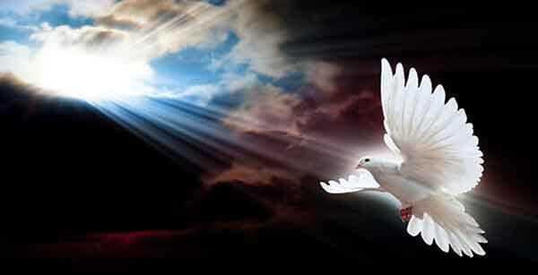 Реальное мистическое спасение. Небесный спаситель