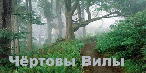 Мистическая история про гиблое место