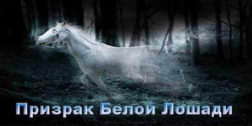 Реальная история про призрак белой лошади