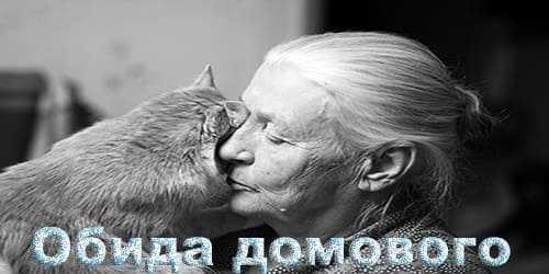 история про домового и кота.