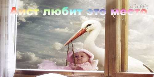 История про ангела аиста приносящего детей