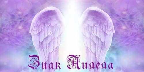 История про ангела хранителя из жизни
