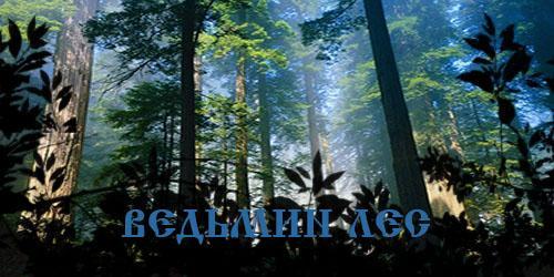 Ведьмин лес.
