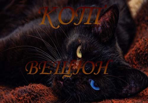 Реинкарнация кошек