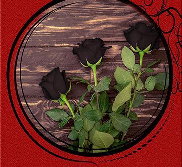 Три чёрные розы и дом на холме
