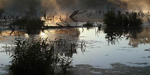 Чёртово болото
